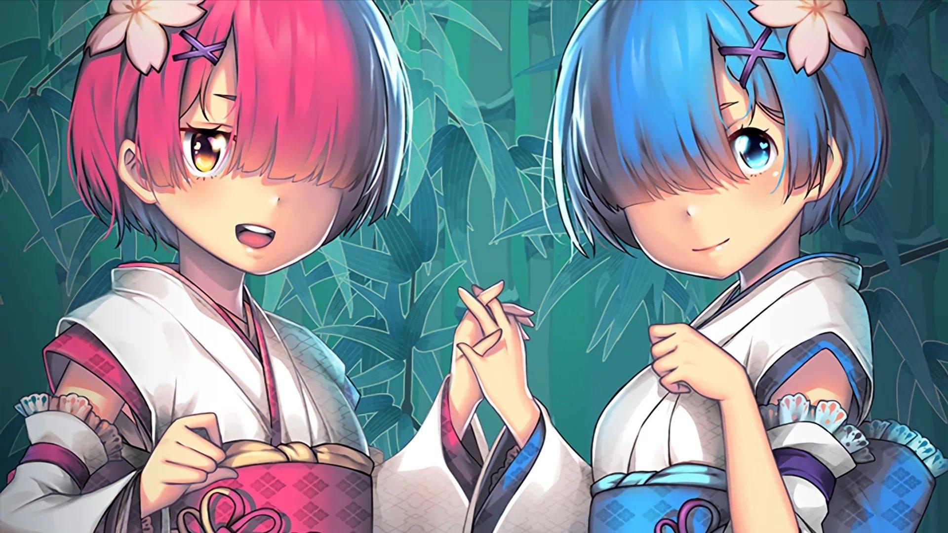Скачать аниме скин Рем и Рам (Rem, Ram) для CS:GO (Модель девушки на игрока)